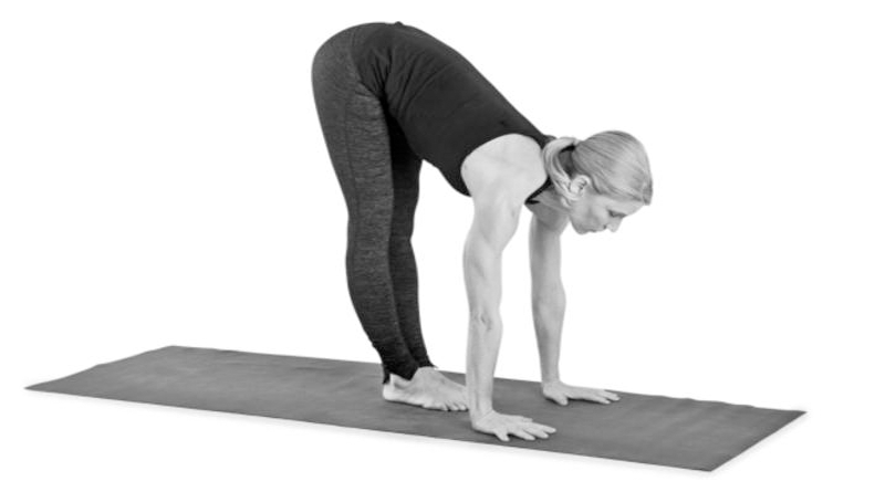 Ardha Uttanasana (Half forward bend)