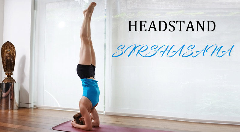 HEADSTAND SIRSHASANA