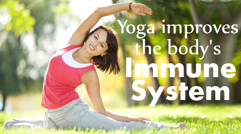 Yoga improves the body's immune system